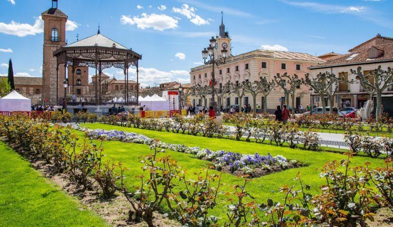 Vista de la ciudad de Alcalá de Henares, un lugar ideal para visitar con tu perro