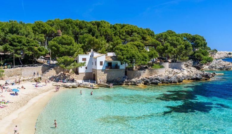 Visita Cala Ratjada con tu perro y disfruta de esta playa de aguas transparentes con estos hoteles para mascotas