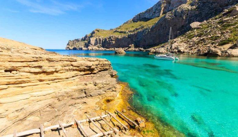 Hoteles que admiten perros en Pollensa para ir con tu perro y disfrutar de las playas de Mallorca este verano